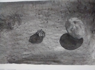Branwen Ruth Williams Charcoal Subtraction drawing