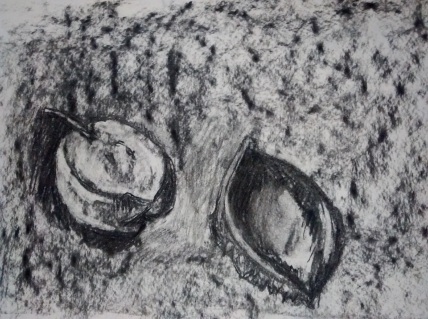 Rhiannon Evans Charcoal Subtraction drawing